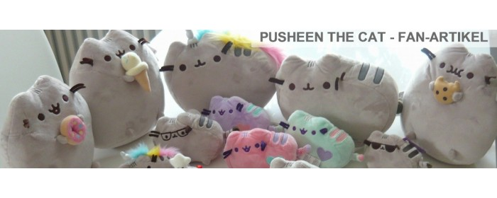 Pusheen the grey Cat